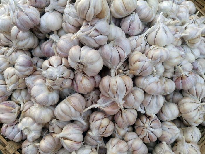 Full frame image of garlic