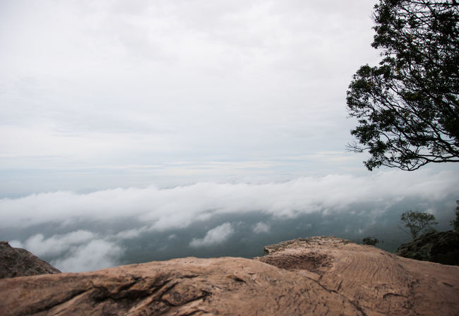 The high cliffs of a vast area filled with fog and clouds. Beauty In Nature Cliff Cloud - Sky Day Fog High Angle View Landscape Low Angle View Mist Mountain Nature No People Outdoors Rock Scenery Scenics Sky Tranquil Scene Tranquility Tree Wide