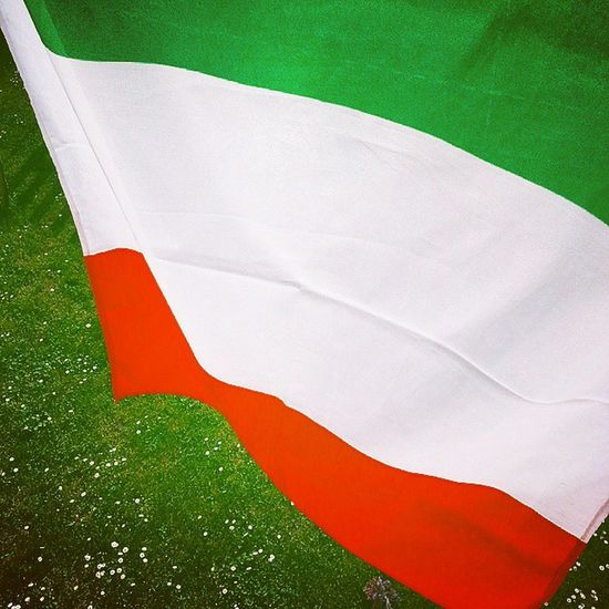 A casa mia il Tricolore verrà sempre issato in queste occasioni, perché il 25aprilegiornatadellaliberazione Anniversariodellaliberazione Liberazione 25Aprile onoriamo tutti coloro che hanno combattuto e sono morti per assicurarci la Libertá ! Onore a voi! Che possiate essere d'esempio per tutti e che ci sia Speranza nei nostri cuori! Verdebiancorosso Greenwhitered Resistenza Lotta Onore Secondaguerramondiale Secondworldwar Italy Partigiani Coraggio Iocicredo