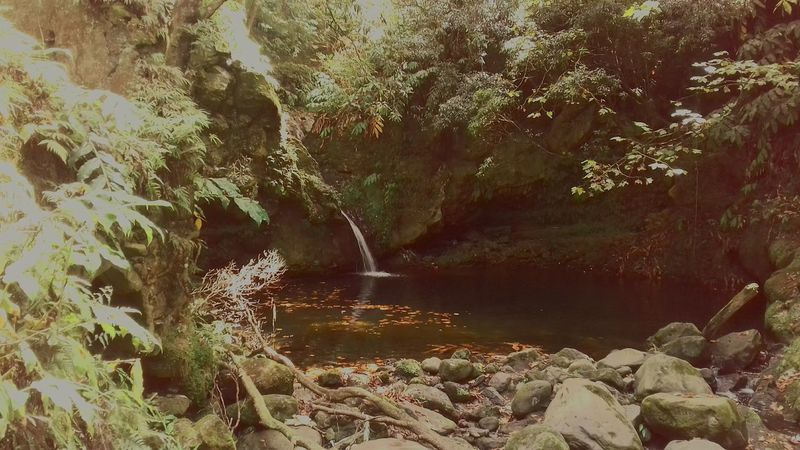 Azores, S. Miguel Hello World Moment Of Zen Relaxing Natural Beauty