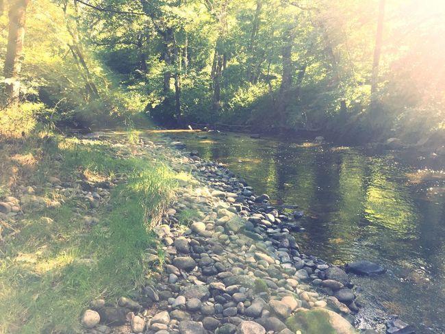 Riviere Lignon River Sérénité