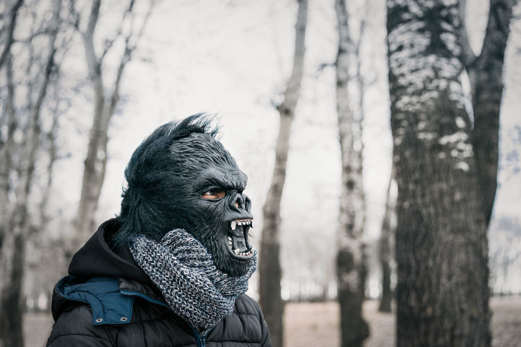 Close-Up Of Person Wearing Gorilla Mask