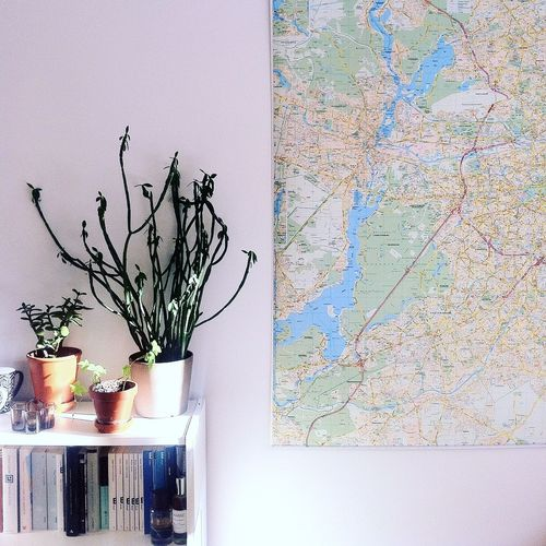 Very proud of our Succulents and Berlin Map ! Home Home Sweet Home At Home Interior Decoration