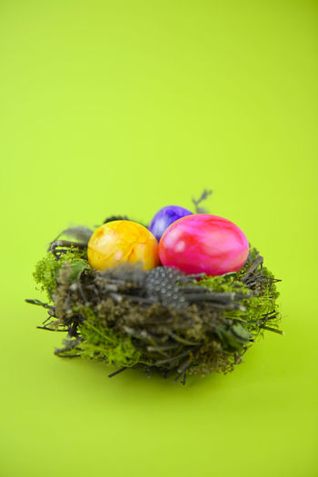 Colored Background Studio Shot Food And Drink Food Green Background Freshness Easter Easter Egg Still Life Holiday Cut Out Indoors  Copy Space Nature No People Close-up Nest Celebration Multi Colored Decoration Holiday Bright Colored Spring