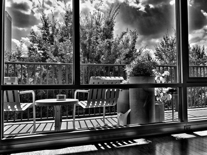 A gentle indicator that winter is coming...the sun creeps deeper into my south-facing treehouse... Window Blackandwhite Looking Through Window