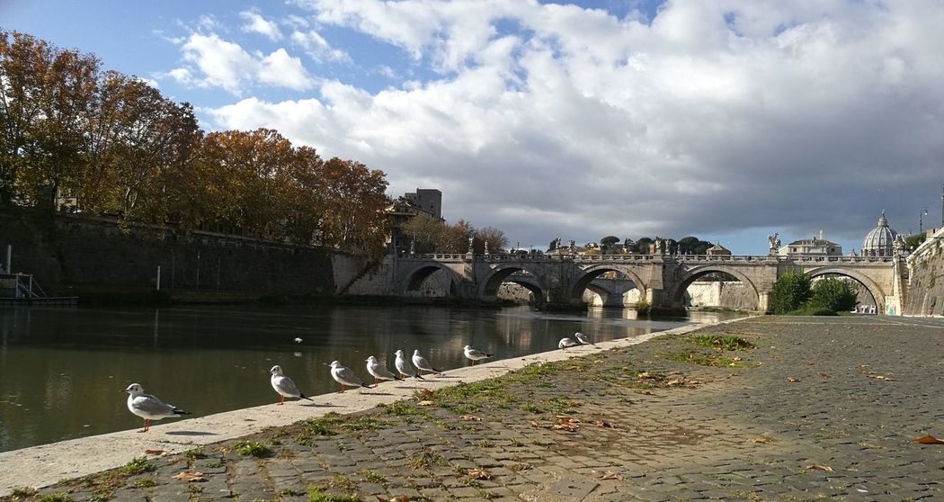 Rome Italy Castelsantangelo Beautifulday Nofilter Seagals Cloud - Sky Water Sky Outdoors Architecture
