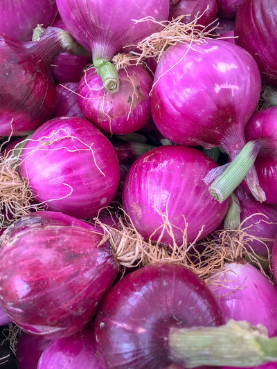 Farmers Market Backgrounds Close-up Food Food And Drink For Sale Freshness Full Frame Healthy Eating Large Group Of Objects Market No People Onion Organic Peeled Red Onions Purple Raw Food Red Onion Retail  Root Vegetable Still Life Vegetable Vegetarian Food Wellbeing