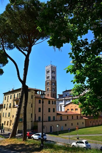 Lucca Italy Architecture Building Exterior Built Structure Car City Day Grass Growth Land Vehicle Nature No People Outdoors Sky Transportation Tree