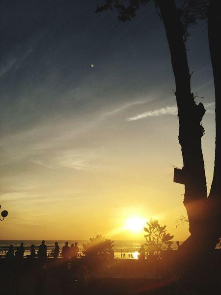Sunset Silhouette Sunlight Tree Sky Outdoors