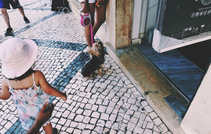 Doglife Color Portrait Streetphotography