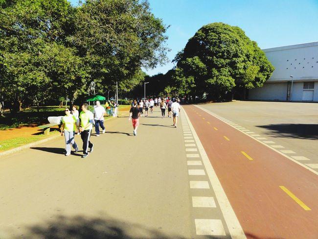 Ibirapuera 3 Pq. Ibirapuera Run Workout Hanging Out