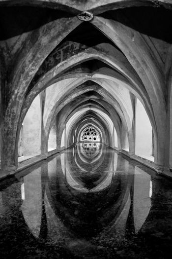 Aljibe Arch Architecture Architecture_collection Archs Black & White Black And White Blackandwhite Bnw Boveda Built Structure Check This Out Day EyeEm Gallery Indoors  No People Reales Alcazares De Sevilla Realesalcazares Tunnel Vision Water Water Reflection Water Reflections Malephotographerofthemonth Welcome To Black The Secret Spaces The Architect - 2017 EyeEm Awards