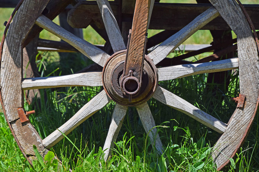 Old wooden cartwheel on green grass Ancient Arm Cart Cart Wheel Cartwheel Close-up Day Detail Deterioration Grass History Old Outdoors Part Of Pivotal Ideas Radius Rusty Spokes Transportation Vintage Wheel Wood Wood - Material Wooden