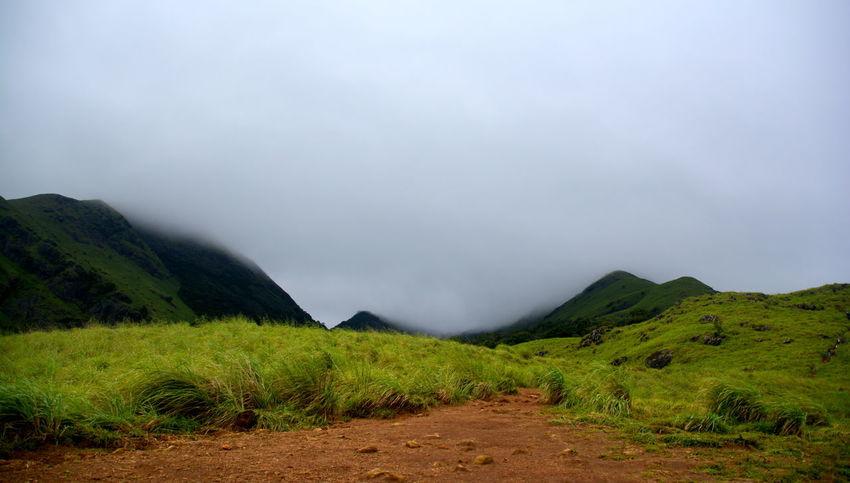 Cloud - Sky Dam Foggy Day Greenery Hilltop Lake Roadtrip Teaestate