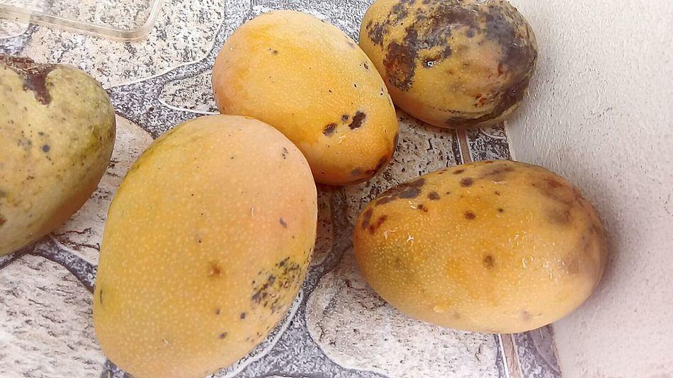 Mango !!!! Delicious Fruit !!!♥♥