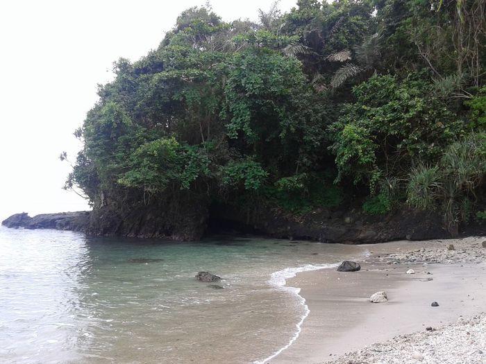 Nusakambangan timur