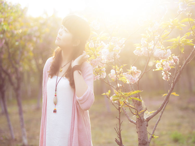 美的眼睛 Beauty In Nature Casual Clothing Close-up Day Flower Focus On Foreground Fragility Growth Leisure Activity Lens Flare Lifestyles Nature Outdoors Plant Sky Sun Sunbeam Sunlight Sunny Tranquility Tree