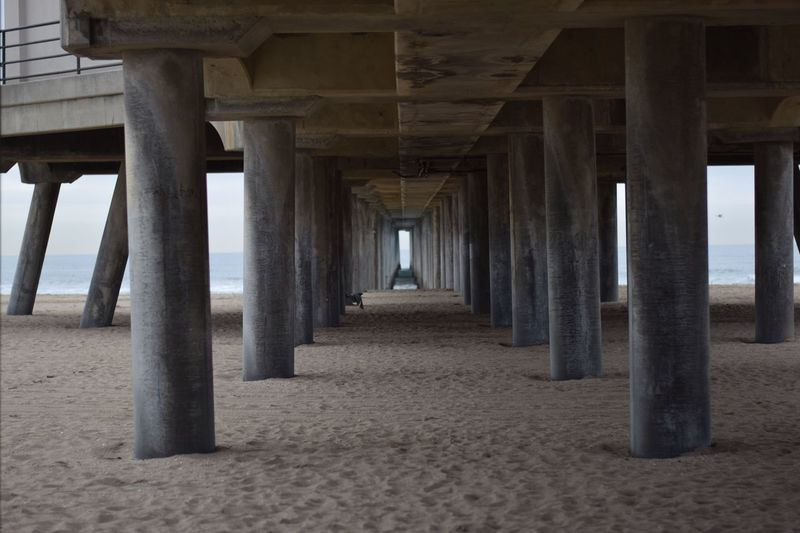Built Structure Architecture In A Row Architectural Column Beach Pier SUPPORT Low Angle View Column Below Repetition Sand Long Supported Pillar Water Shore Surface Level Tranquil Scene Day Bird