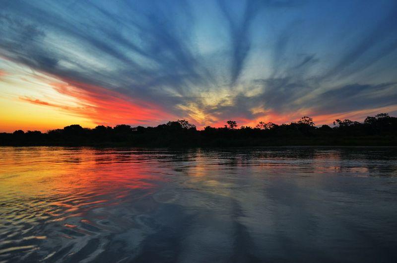 Pantanal Matogrossodosul Coxim Brazil Riotaquari Taquari Pescaria