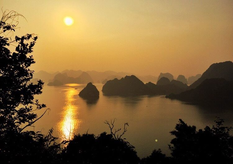 The Halong Bay sunset and scene is framed by the shadowed silhouettes of the plants in the foreground LLLimages Halong Bay Vietnam HalongbayCruise CaughtintheFrame