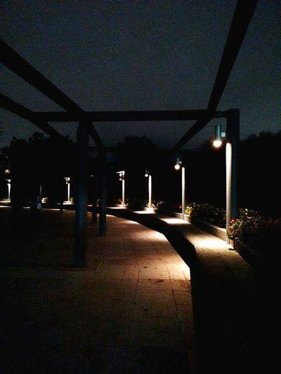 Lo magnifico de la noche. Light In The Darkness Parkatnight Parquefundidora Monterrey Lamps Nightphotography