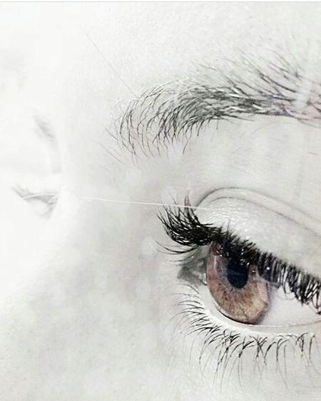 Eyesbrown MyEyes ^-^