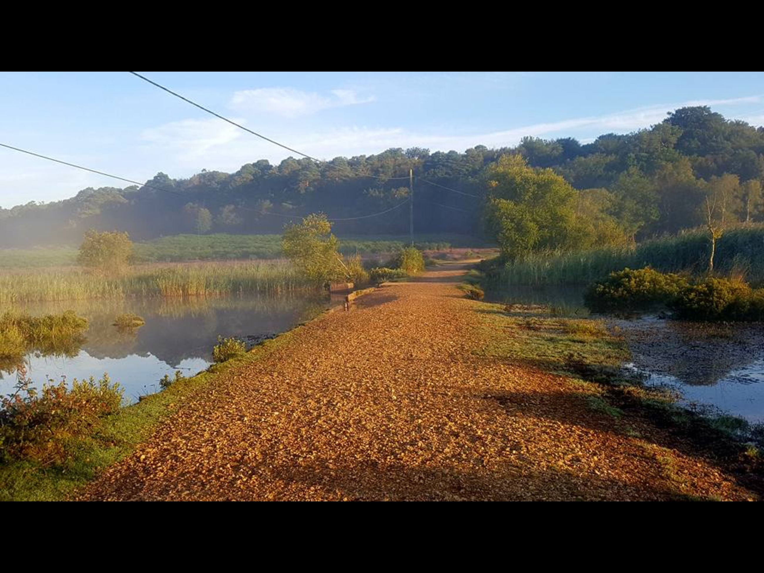 tree, water, tranquil scene, tranquility, lake, the way forward, scenics, sky, day, nature, cable, beauty in nature, long, outdoors, rural scene, non-urban scene, calm, tourism, footpath, no people, power line, lens flare