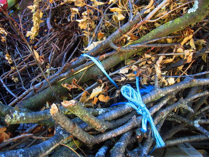 Autumn Blue Ribbon Close-up Cut Wood Detail Full Frame No People Südtirol