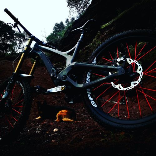 Evilbikes Downhill Bike