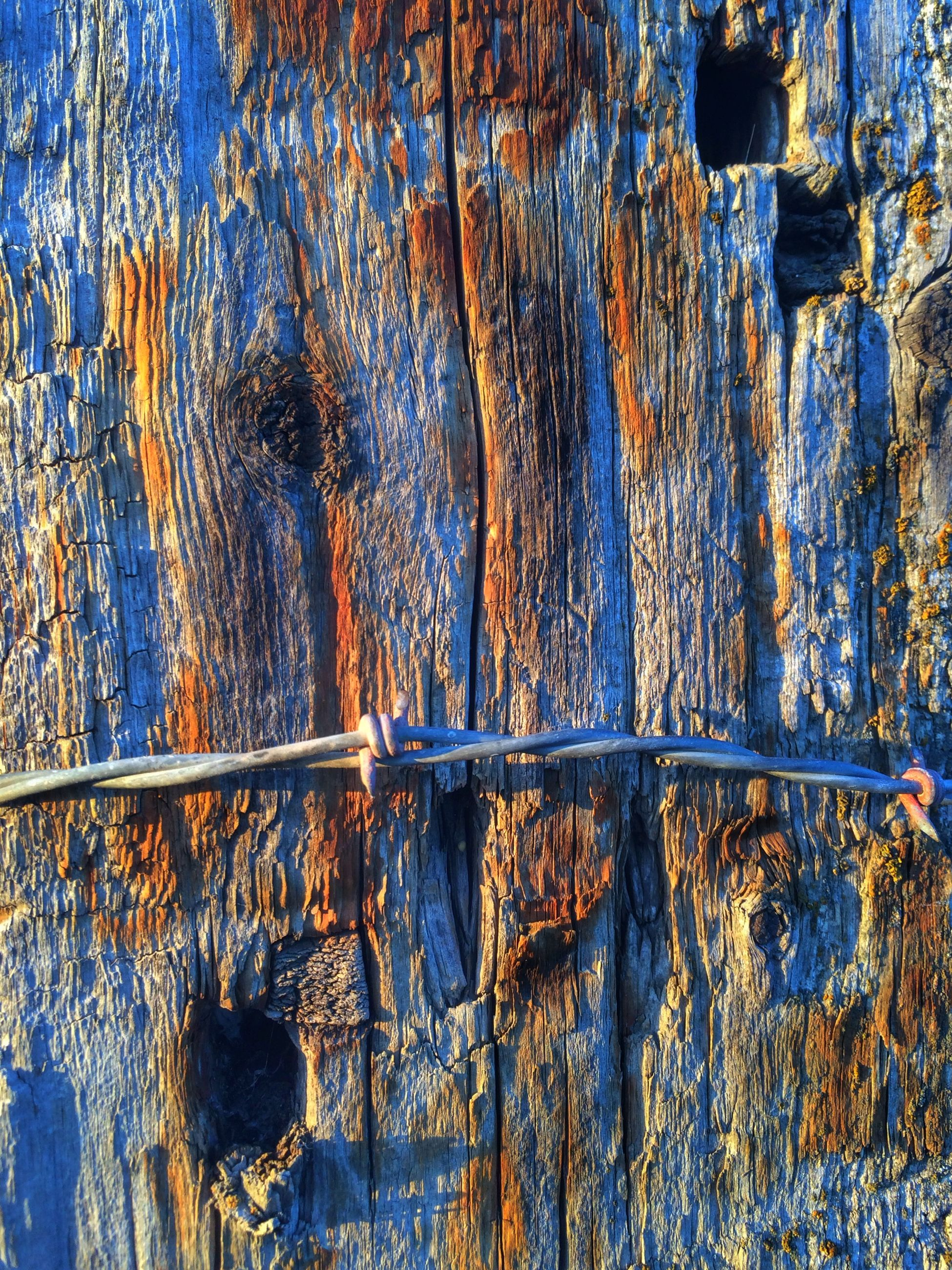 full frame, textured, backgrounds, weathered, wood - material, close-up, old, pattern, rough, wooden, wood, rusty, deterioration, detail, damaged, blue, built structure, no people, wall - building feature, part of