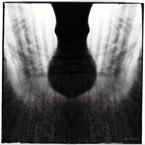 Vase & Reflection