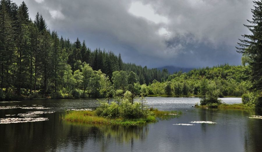 Loch Arklet Forest Lochan A' Ghleannain Beauty In Nature Cloud - Sky Day Forest Green Color Growth Lake Nature No People Outdoors Reflection Scenics Sky Tranquil Scene Tranquility Tree Water