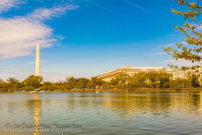Washington Monument DMV DC Washington, D. C. Landscape Water Reflection Waterfront Landmark National America Murica Merica