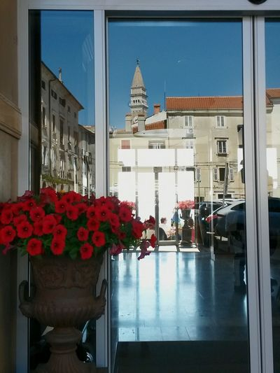 The city reflected over the glass door at the hotel entrance. Travel Destinations Red City History Built Structure Day Reflections Glass Reflection Doors With A Story Hotel Entrance Flowers City Reflected In The Glass Piran/Pirano Hotel The Street Photographer - 2017 EyeEm Awards