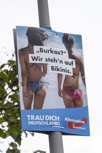 Agitation Alternative Für Deutschland Bikini Communication Election Campaign Election Campain Girls Placard Posters Text Western Script The Week On EyeEm