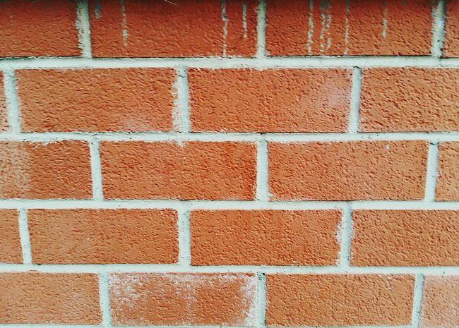 Texture Textured Background Textures Muro  Wall Wall Textures Red Mattoni Parete Mattoncini Wall Of Bricks Brick Wall Bricks Backgrounds