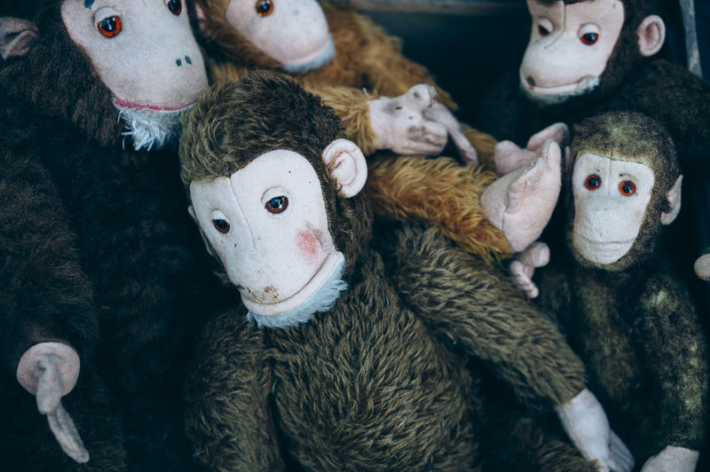 a vintage toy monkey family on a antique market 1930s Antique Antiques Market Cuddly Day Fur German Monkey Face Monkeys No People Retro Soft Toy Soft Toys Stuffed Toy Toy Toys Used Vintage