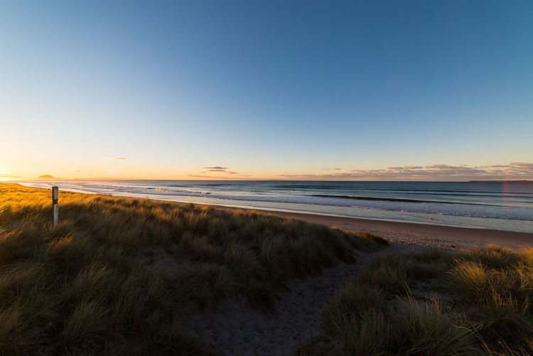 Papamoa beach at sunset Beach Beauty In Nature Clear Sky Colorful Evening Grass Horizon Over Water Landscape Nature New Zealand No People Outdoors Sand Scenics Sea Sky Sunset Tranquil Scene Travel Travel Destinations Water