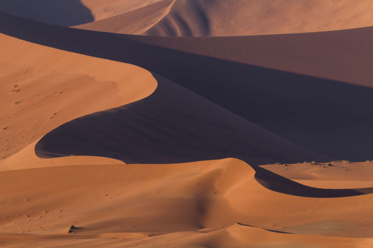 High angle view of sand dune at desert