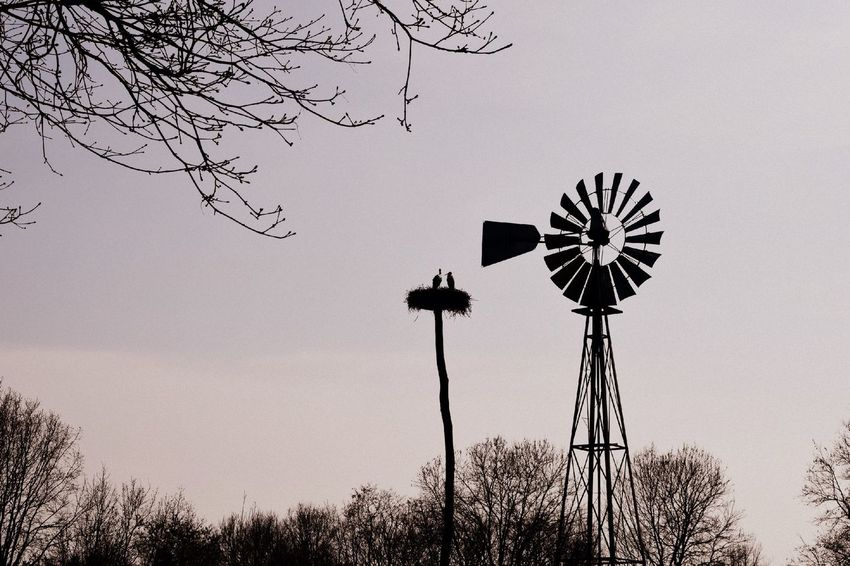 Alternative Energy Birds Clear Sky Day Environmental Conservation Low Angle View Nature No People Outdoors Renewable Energy Rural Scene Silhouette Storch Storchennest Storchenpaar Störche Tranquility Vogel Windmill