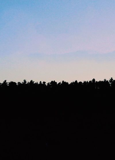 Scenic view of silhouette trees against clear sky during sunset