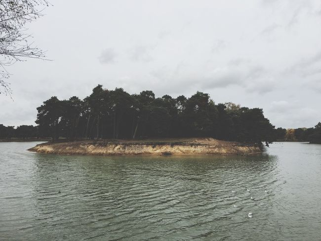 Small island Landscape Sand River Safari Nature Water Trees Autumn Beautiful Island
