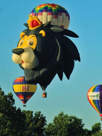 Hot Air Balloon Outdoors Clear Sky Lion King Of The Jungle Fun