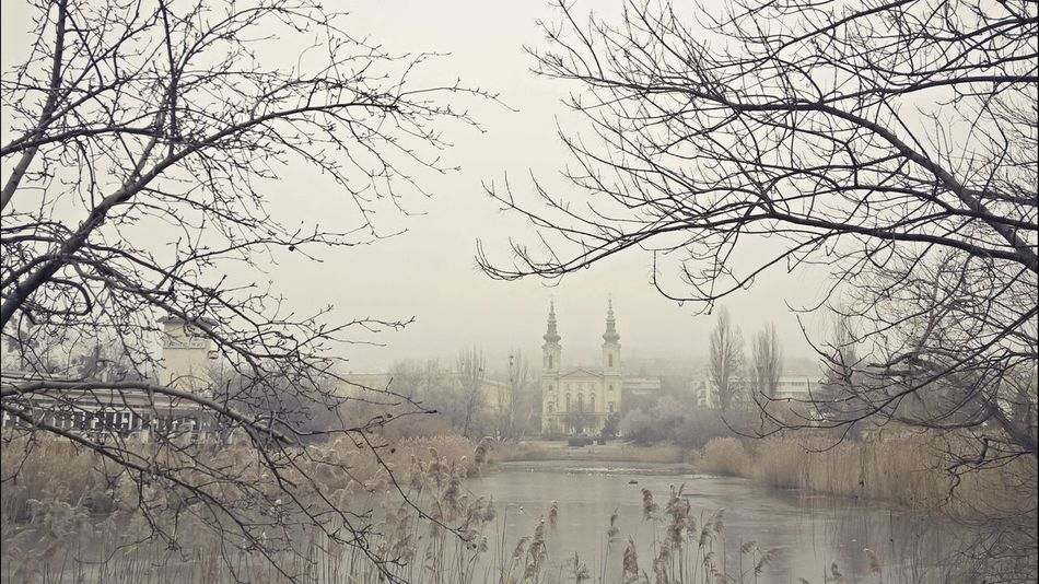 #architecture #budapest #City #cityscapes #foggy #Instagram #Lake #lumiaphoto #temple #Winter #winter2016 Bare Tree Beauty In Nature Branch Fog Lake Landscape Nature No People Outdoors Reflection Sky Tranquility Tree Water
