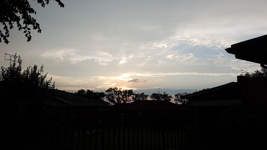 Sunset Silhouette Social Issues Tree Sky Nature No People Outdoors Day South Africa 🇿🇦 God's Glory On Display  Sunset_collection Sunset Over Africa
