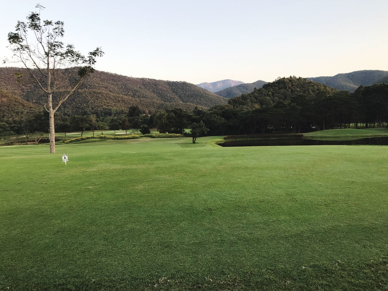 golf, golf course, green - golf course, tree, grass, green color, sport, scenics, beauty in nature, nature, golf club, leisure activity, putting green, golfer, day, outdoors, mountain, taking a shot - sport, tranquility, clear sky, sky, tee, sportsman