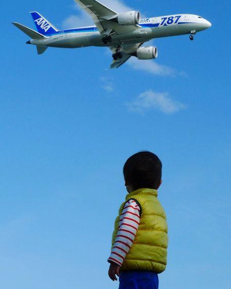 飛行機も好きになりました。 城南島海浜公園 羽田空港 B787
