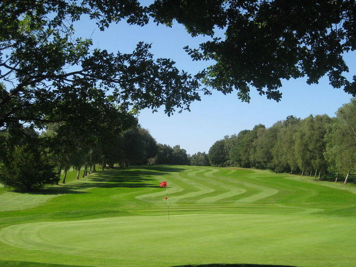Flag Golf Golf Course Grass Green Color Mowing Nevill Golf Club Sport Stripes Tree Tunbridge Wells