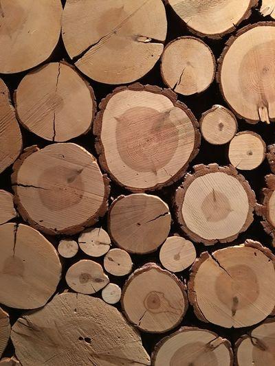 Wood Wooden Wood Art Wooden Texture Woodwork  Wood Grain WoodArt Tree Cut Wood Cut Wood - Material Pine Tree Pine Tree Cuts Circles Circle Nature Textures Old IPhone Iphoneonly Iphonephotography IPhone Photography Iphone6splus IPhone6s+