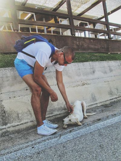 Full Length One Person Outdoors Day People Adult Summer Real People Dog Dog Play Man And Dog Game Love Backpack Young Man Shorthair